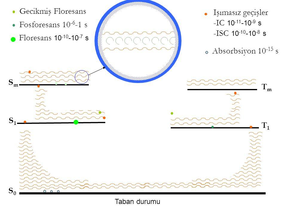 Taban durumu S0S0 S1S1 SmSm TmTm T1T1 Işımasız geçişler -IC 10 -11 -10 -9 s -ISC 10 -10 -10 -8 s Gecikmiş Floresans Fosforesans 10 -6 -1 s Floresans 10 -10 -10 -7 s Absorbsiyon 10 -15 s