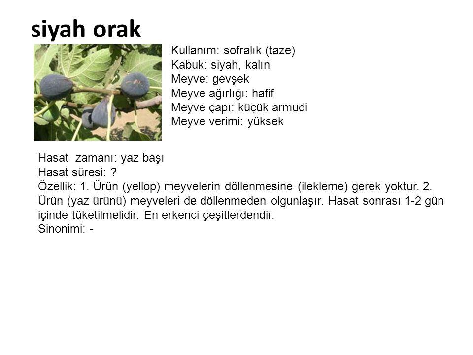 siyah orak Kullanım: sofralık (taze) Kabuk: siyah, kalın Meyve: gevşek Meyve ağırlığı: hafif Meyve çapı: küçük armudi Meyve verimi: yüksek Hasat zaman