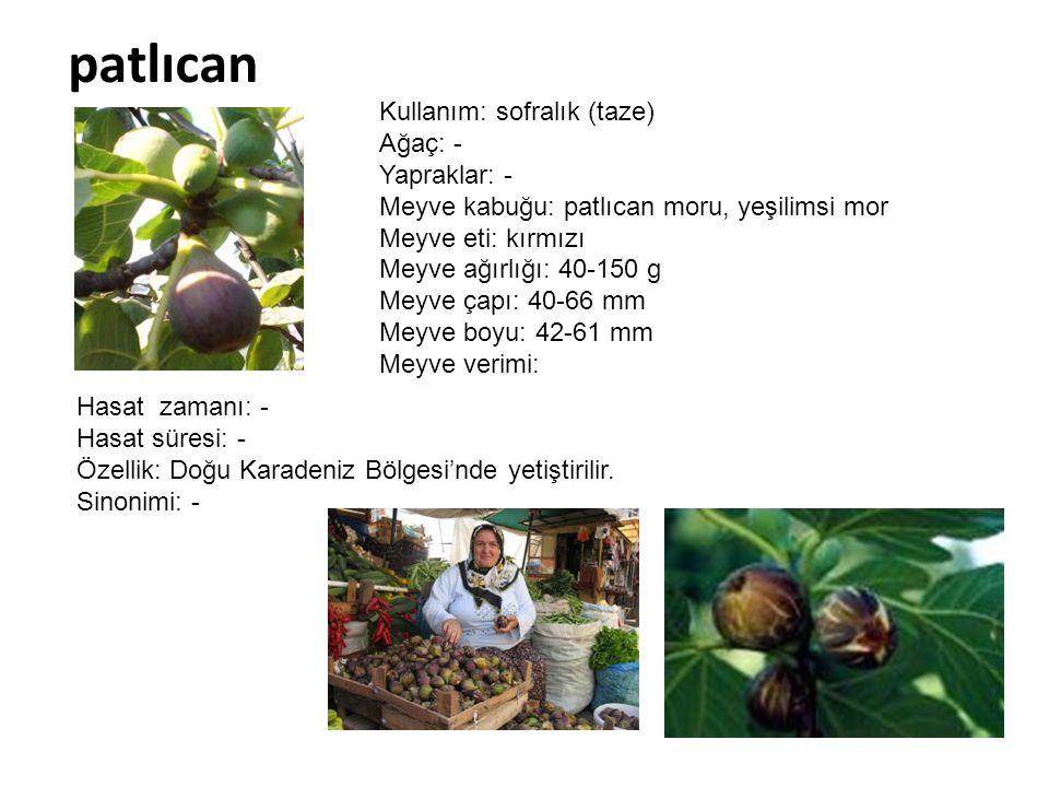 patlıcan Kullanım: sofralık (taze) Ağaç: - Yapraklar: - Meyve kabuğu: patlıcan moru, yeşilimsi mor Meyve eti: kırmızı Meyve ağırlığı: 40-150 g Meyve ç