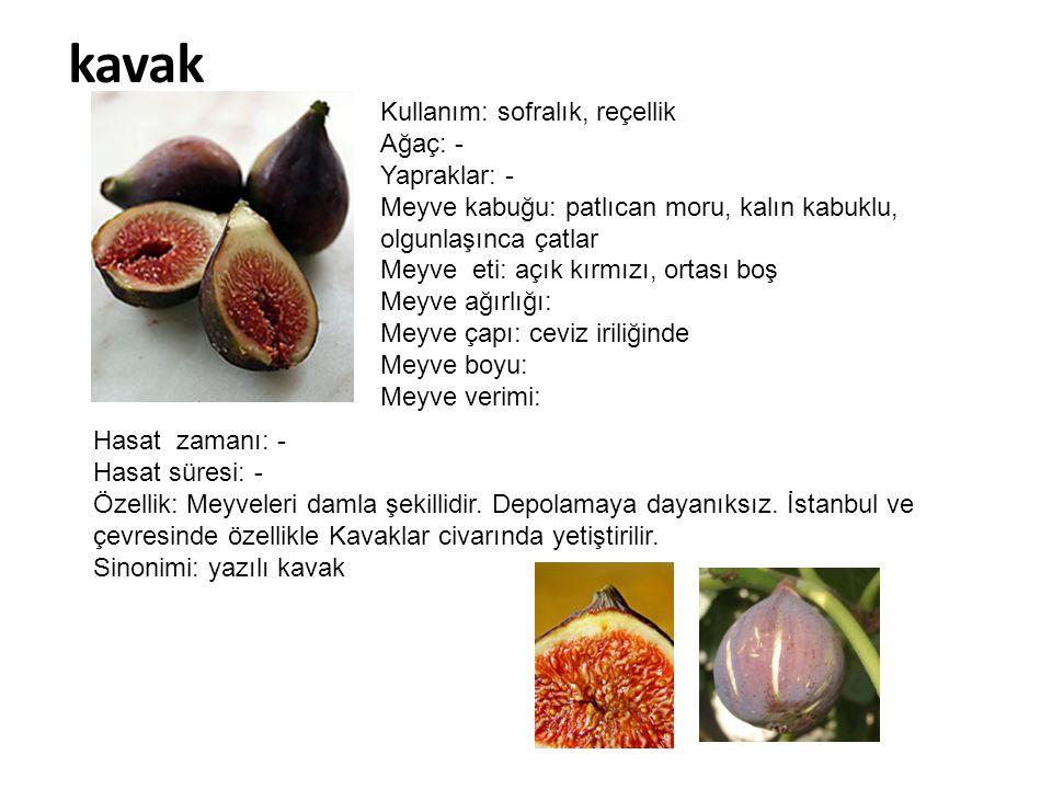 kavak Kullanım: sofralık, reçellik Ağaç: - Yapraklar: - Meyve kabuğu: patlıcan moru, kalın kabuklu, olgunlaşınca çatlar Meyve eti: açık kırmızı, ortas