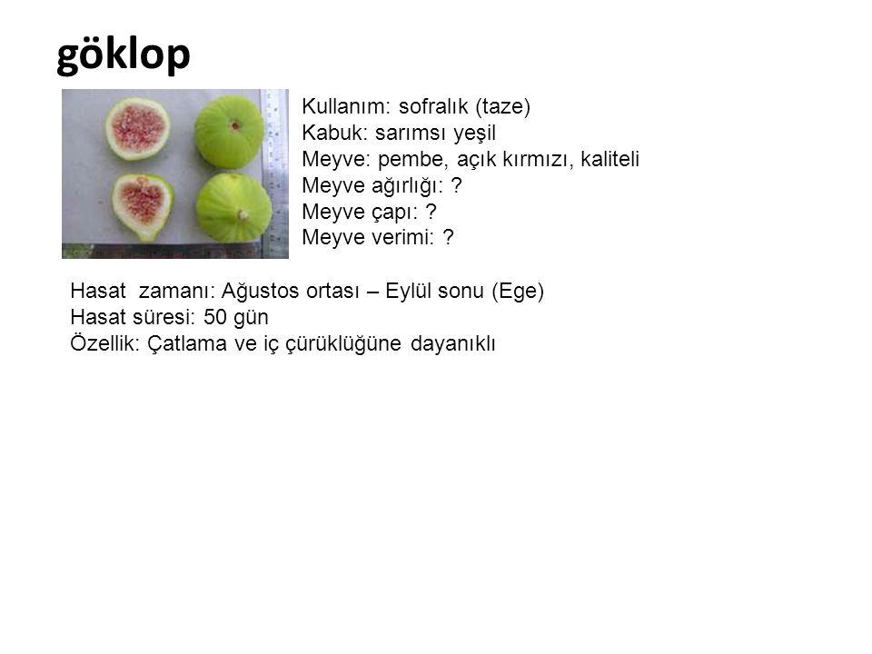 göklop Kullanım: sofralık (taze) Kabuk: sarımsı yeşil Meyve: pembe, açık kırmızı, kaliteli Meyve ağırlığı: ? Meyve çapı: ? Meyve verimi: ? Hasat zaman