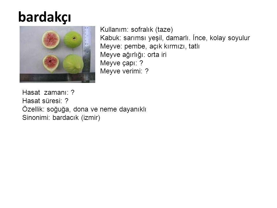 bardakçı Kullanım: sofralık (taze) Kabuk: sarımsı yeşil, damarlı. İnce, kolay soyulur Meyve: pembe, açık kırmızı, tatlı Meyve ağırlığı: orta iri Meyve