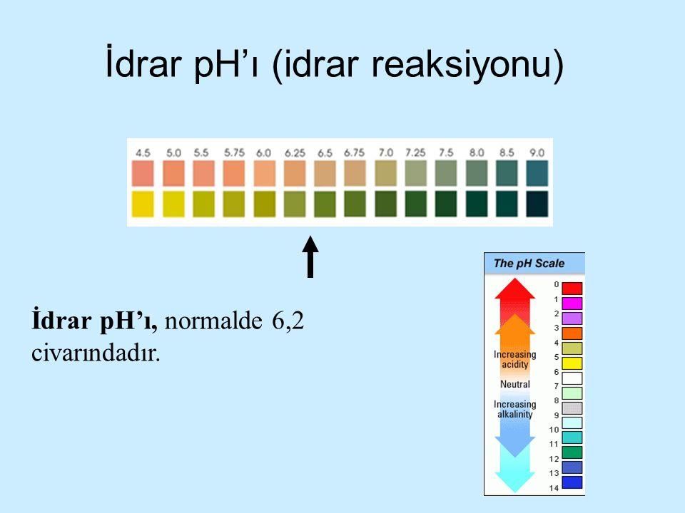 İdrar pH'ı (idrar reaksiyonu) İdrar pH'ı, normalde 6,2 civarındadır.
