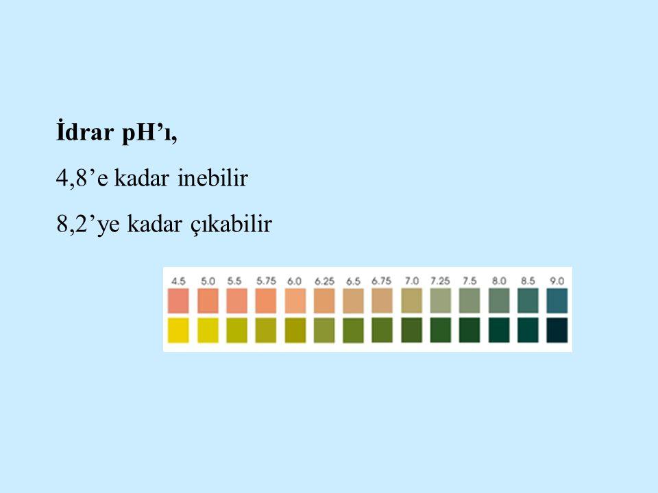 İdrar pH'ı, 4,8'e kadar inebilir 8,2'ye kadar çıkabilir