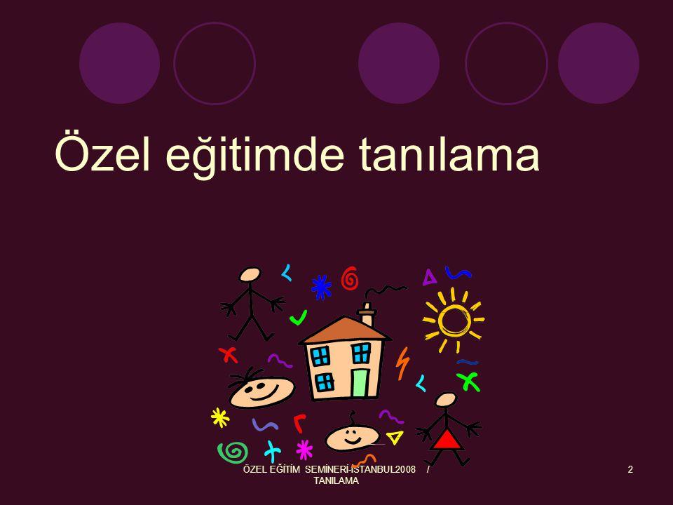 ÖZEL EĞİTİM SEMİNERİ-İSTANBUL2008 / TANILAMA 2 Özel eğitimde tanılama