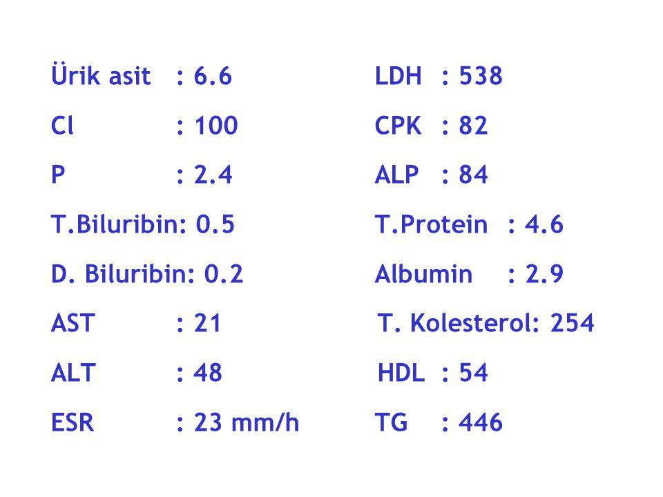 Ürik asit: 6.6 LDH: 538 Cl: 100 CPK: 82 P: 2.4 ALP: 84 T.Biluribin: 0.5 T.Protein: 4.6 D.