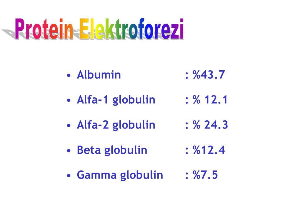 Albumin: %43.7 Alfa-1 globulin: % 12.1 Alfa-2 globulin: % 24.3 Beta globulin: %12.4 Gamma globulin: %7.5