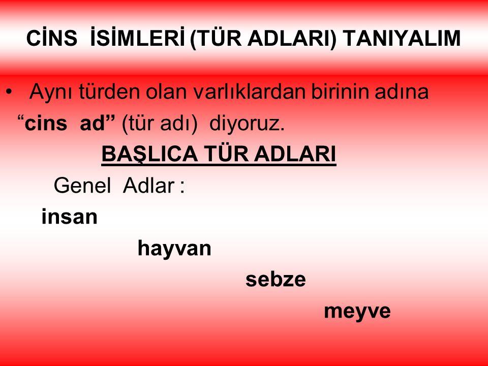 Kurum ve kuruluş adlarına gelen ekler de kesme işaretiyle ayrılmaz Türkiye Büyük Millet Meclisine Şehitler İlköğretim Okulunda Ege Üniversitesi Hastan