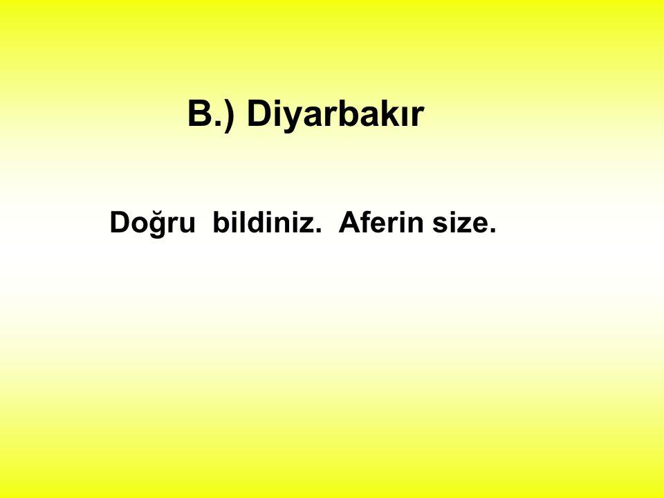1.) Aşağıdakilerden hangisi özel addır ? A.) kapı B.) Diyarbakır C.) bıçak