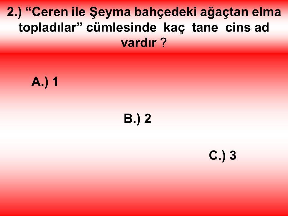 B.) Diyarbakır Doğru bildiniz. Aferin size.