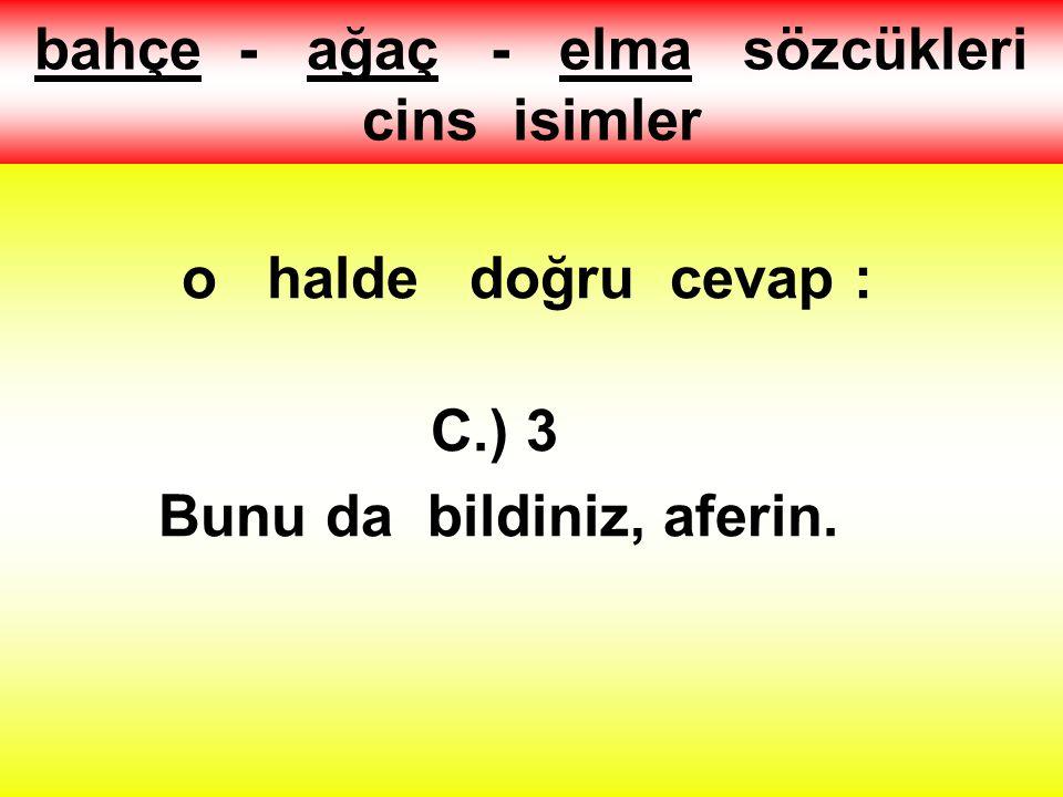 """2.) """"Ceren ile Şeyma bahçedeki ağaçtan elma topladılar"""" cümlesinde kaç tane cins ad vardır ? A.) 1 B.) 2 C.) 3"""
