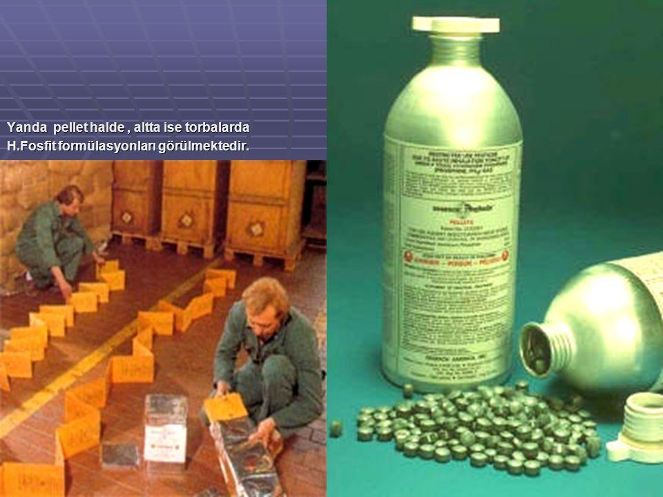 Yanda pellet halde, altta ise torbalarda H.Fosfit formülasyonları görülmektedir.