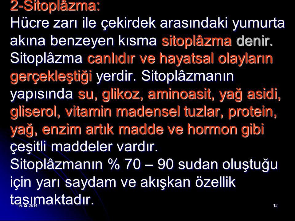 14.12.201413 2-Sitoplâzma: Hücre zarı ile çekirdek arasındaki yumurta akına benzeyen kısma sitoplâzma denir.