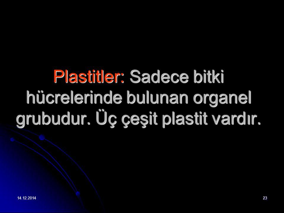 14.12.201423 Plastitler: Sadece bitki hücrelerinde bulunan organel grubudur.