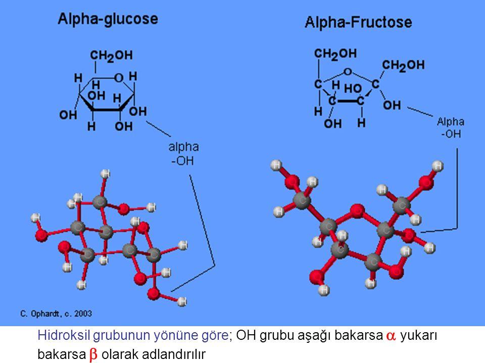 Hidroksil grubunun yönüne göre; OH grubu aşağı bakarsa  yukarı bakarsa  olarak adlandırılır