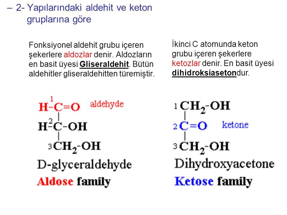 OLİGOSAKKARİTLER 8-10 monosakkarit biriminden meydana gelir