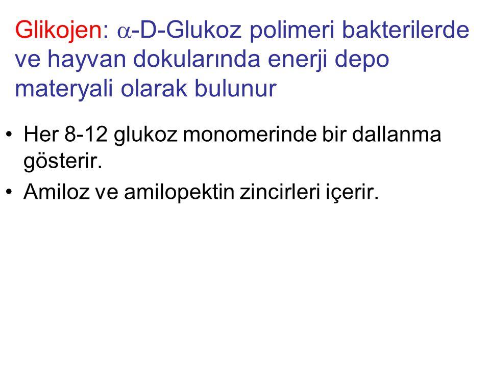 Glikojen:  -D-Glukoz polimeri bakterilerde ve hayvan dokularında enerji depo materyali olarak bulunur Her 8-12 glukoz monomerinde bir dallanma gösterir.