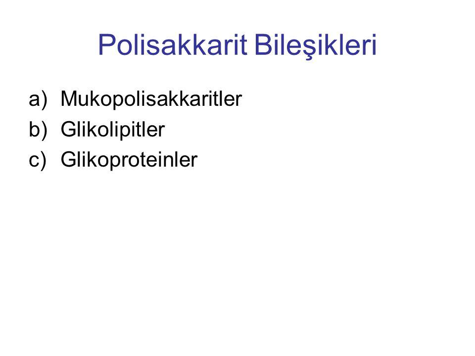Polisakkarit Bileşikleri a)Mukopolisakkaritler b)Glikolipitler c)Glikoproteinler