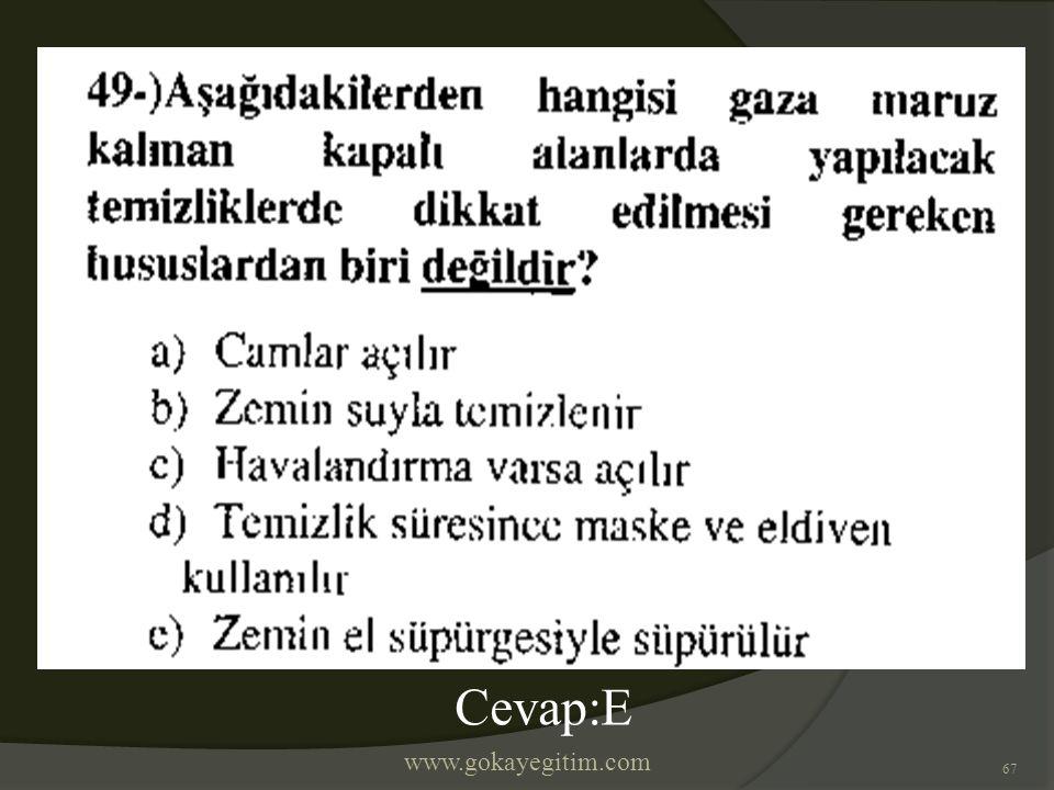 www.gokayegitim.com 67 Cevap:E