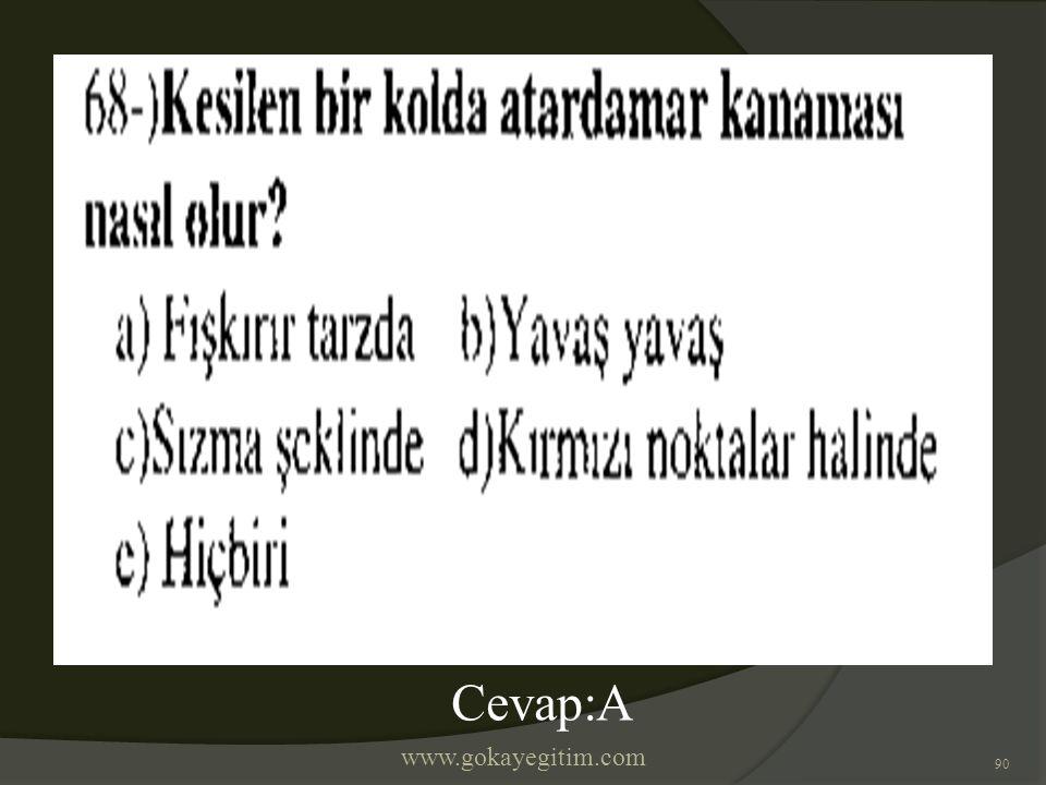 www.gokayegitim.com 90 Cevap:A