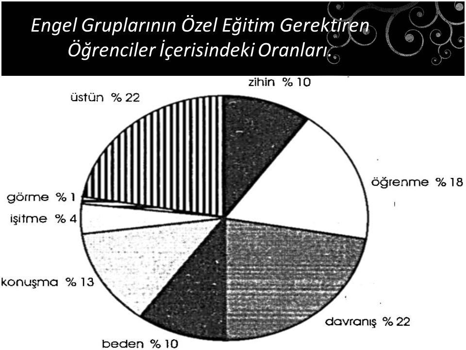Engel Gruplarının Özel Eğitim Gerektiren Öğrenciler İçerisindeki Oranları.