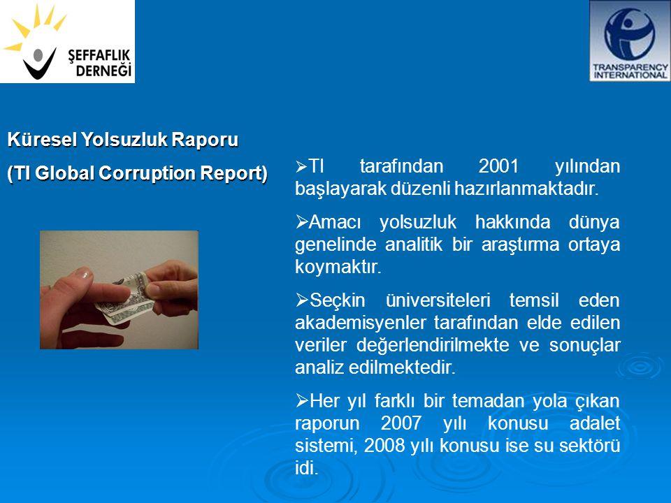 Küresel Yolsuzluk Raporu (TI Global Corruption Report)  TI tarafından 2001 yılından başlayarak düzenli hazırlanmaktadır.
