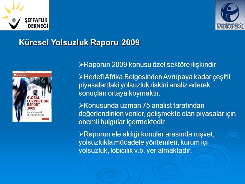  Raporun 2009 konusu özel sektöre ilişkindir  Hedefi Afrika Bölgesinden Avrupaya kadar çeşitli piyasalardaki yolsuzluk riskini analiz ederek sonuçları ortaya koymaktır.