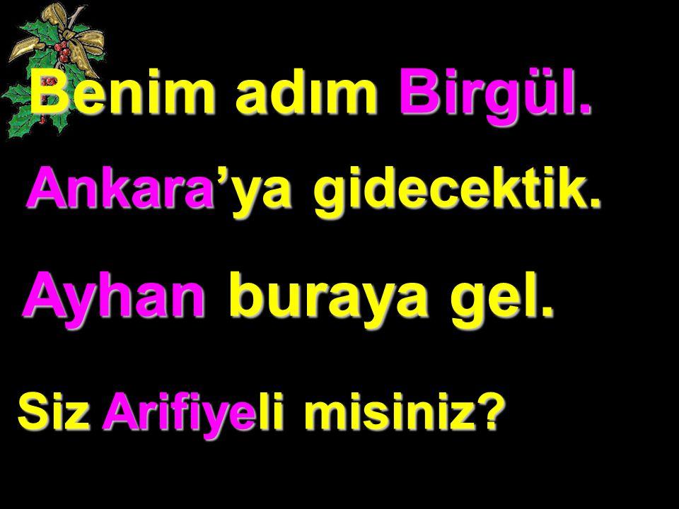 Benim adım Birgül. Ankara'ya gidecektik. Ayhan buraya gel. Siz Arifiyeli misiniz?