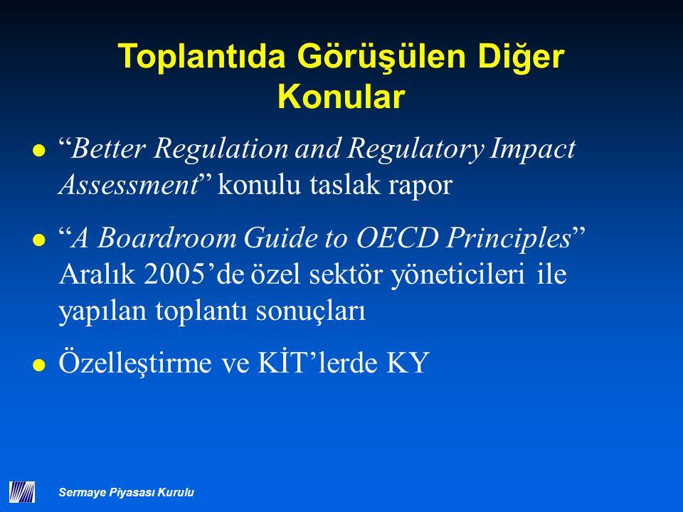 """Sermaye Piyasası Kurulu Toplantıda Görüşülen Diğer Konular """"Better Regulation and Regulatory Impact Assessment"""" konulu taslak rapor """"A Boardroom Guide"""