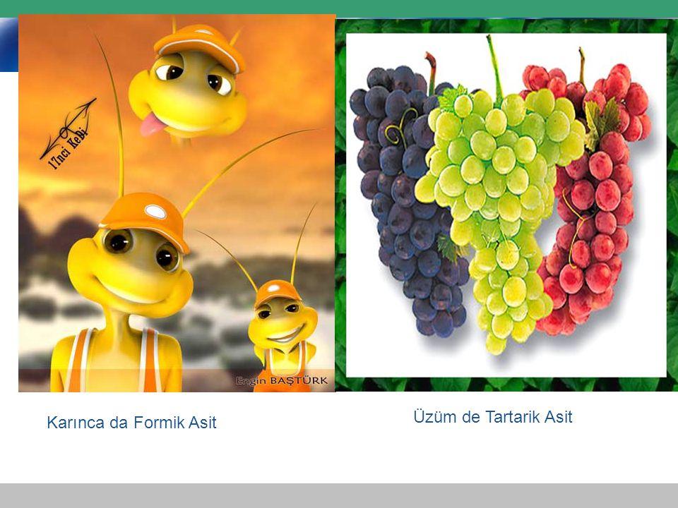 Karınca da Formik Asit Üzüm de Tartarik Asit