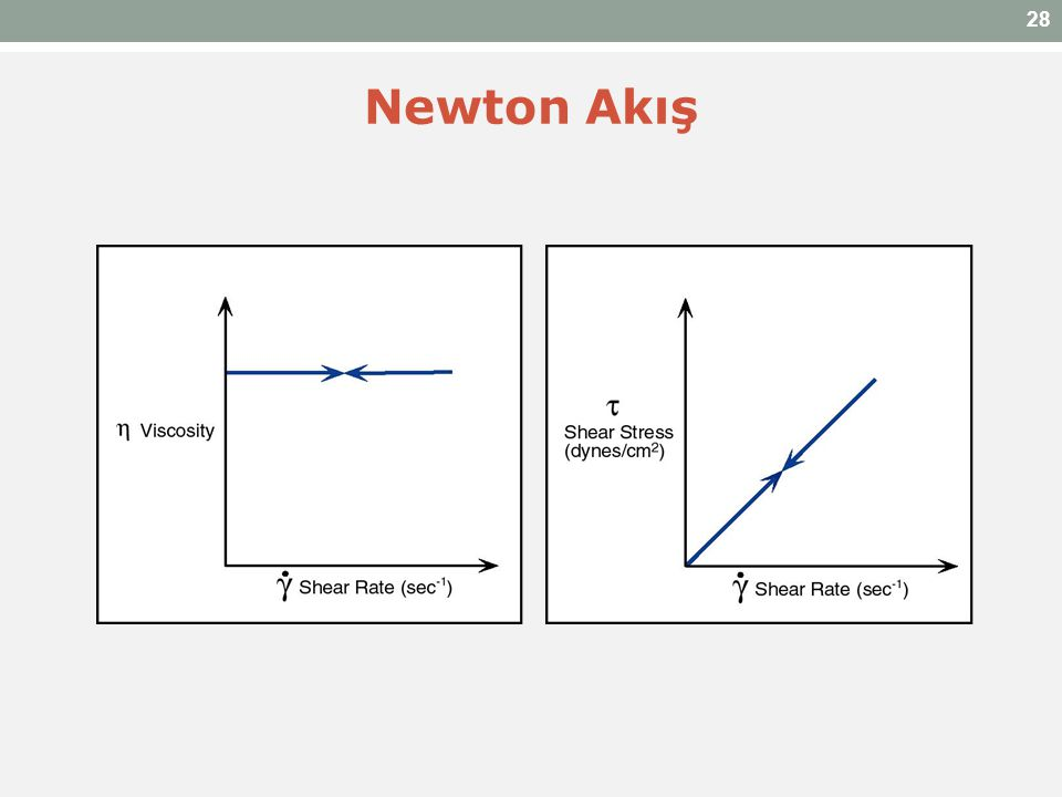 28 Newton Akış