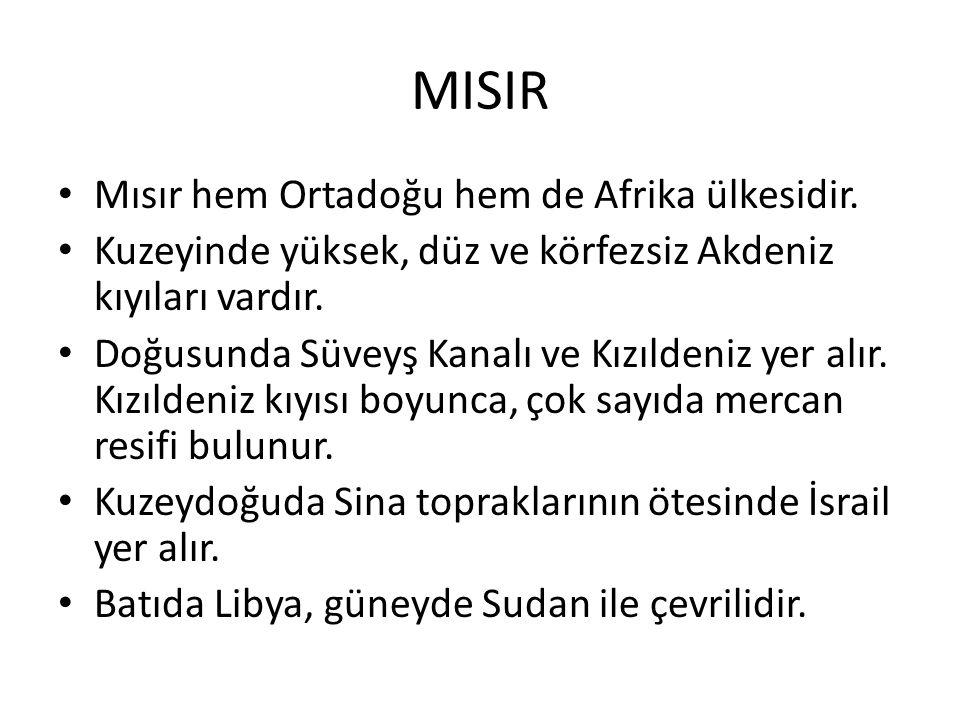 MISIR Mısır hem Ortadoğu hem de Afrika ülkesidir.