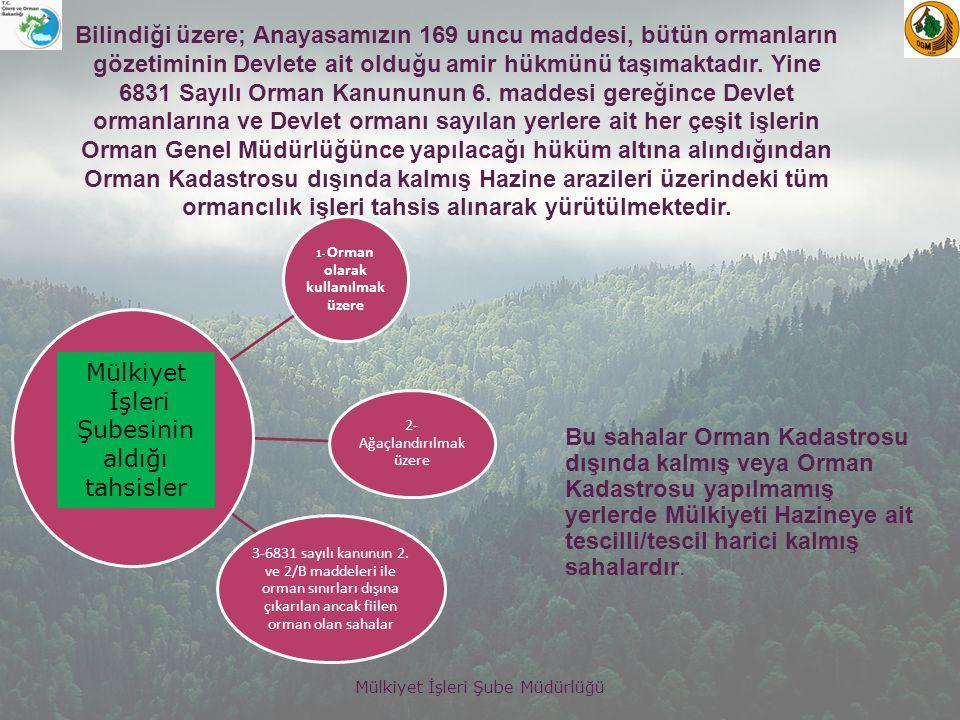 Mülkiyet İşleri Şube Müdürlüğü Tahsisli sahalarla ilgili bazı veriler şöyledir.