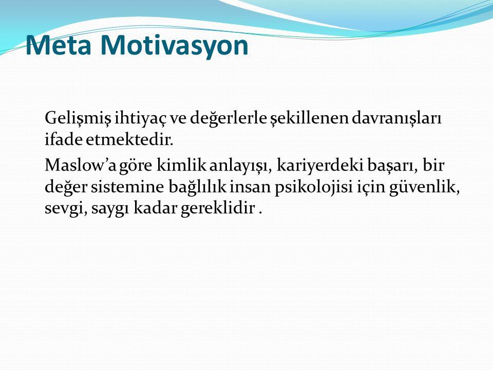 Meta Motivasyon Gelişmiş ihtiyaç ve değerlerle şekillenen davranışları ifade etmektedir.