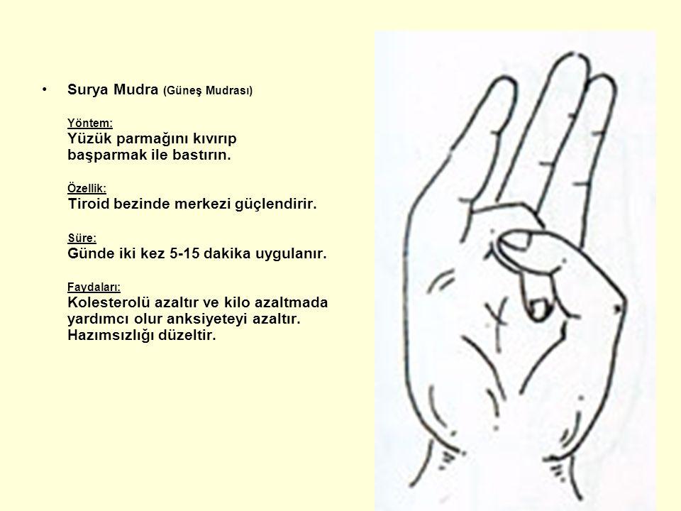 Surya Mudra (Güneş Mudrası) Yöntem: Yüzük parmağını kıvırıp başparmak ile bastırın. Özellik: Tiroid bezinde merkezi güçlendirir. Süre: Günde iki kez 5