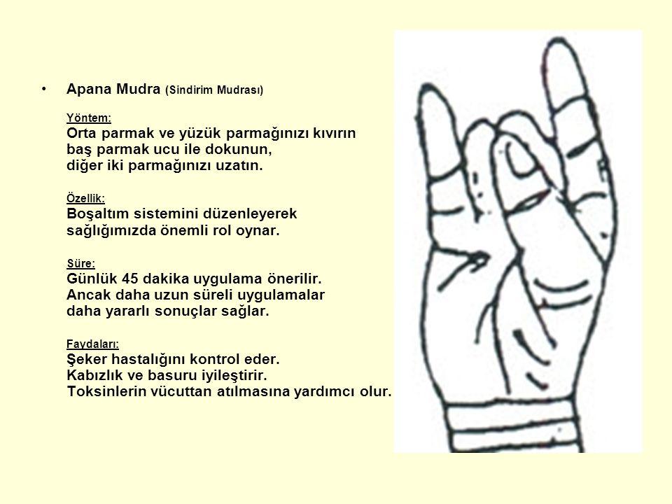 Apana Mudra (Sindirim Mudrası) Yöntem: Orta parmak ve yüzük parmağınızı kıvırın baş parmak ucu ile dokunun, diğer iki parmağınızı uzatın. Özellik: Boş