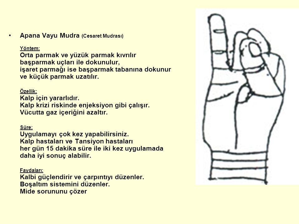 Apana Vayu Mudra (Cesaret Mudrası) Yöntem: Orta parmak ve yüzük parmak kıvrılır başparmak uçları ile dokunulur, işaret parmağı ise başparmak tabanına