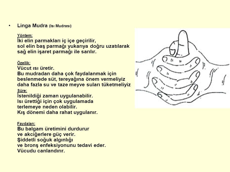 Linga Mudra (Isı Mudrası) Yöntem: İki elin parmakları iç içe geçirilir, sol elin baş parmağı yukarıya doğru uzatılarak sağ elin işaret parmağı ile sar