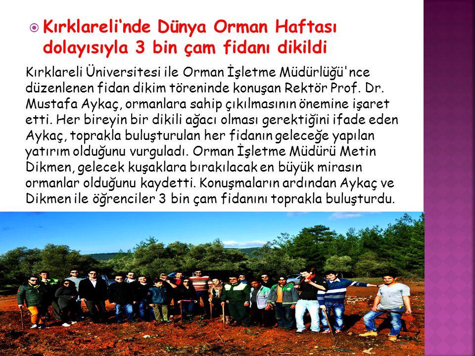  Kırklareli'nde Dünya Orman Haftası dolayısıyla 3 bin çam fidanı dikildi Kırklareli Üniversitesi ile Orman İşletme Müdürlüğü nce düzenlenen fidan dikim töreninde konuşan Rektör Prof.
