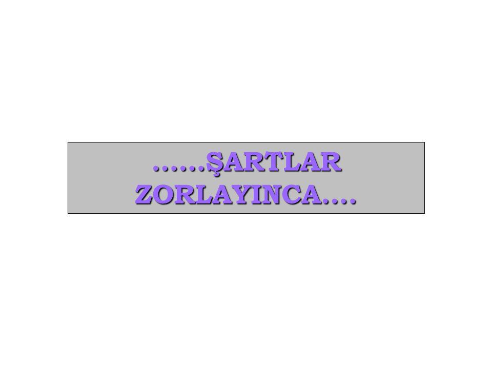 ……ŞARTLARZORLAYINCA….