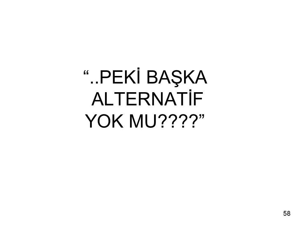 ..PEKİ BAŞKA ALTERNATİF YOK MU 58
