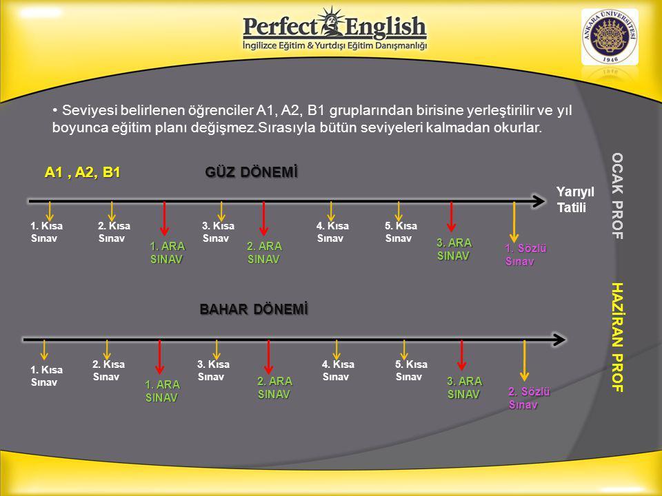 Seviyesi belirlenen öğrenciler A1, A2, B1 gruplarından birisine yerleştirilir ve yıl boyunca eğitim planı değişmez.Sırasıyla bütün seviyeleri kalmadan