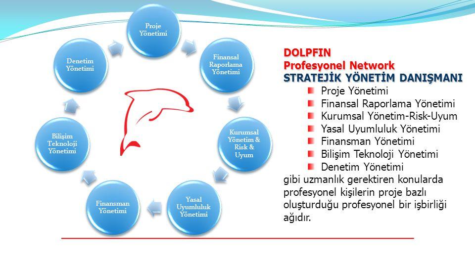 DOLPFIN Profesyonel Network STRATEJİK YÖNETİM DANIŞMANI Proje Yönetimi Finansal Raporlama Yönetimi Kurumsal Yönetim-Risk-Uyum Yasal Uyumluluk Yönetimi