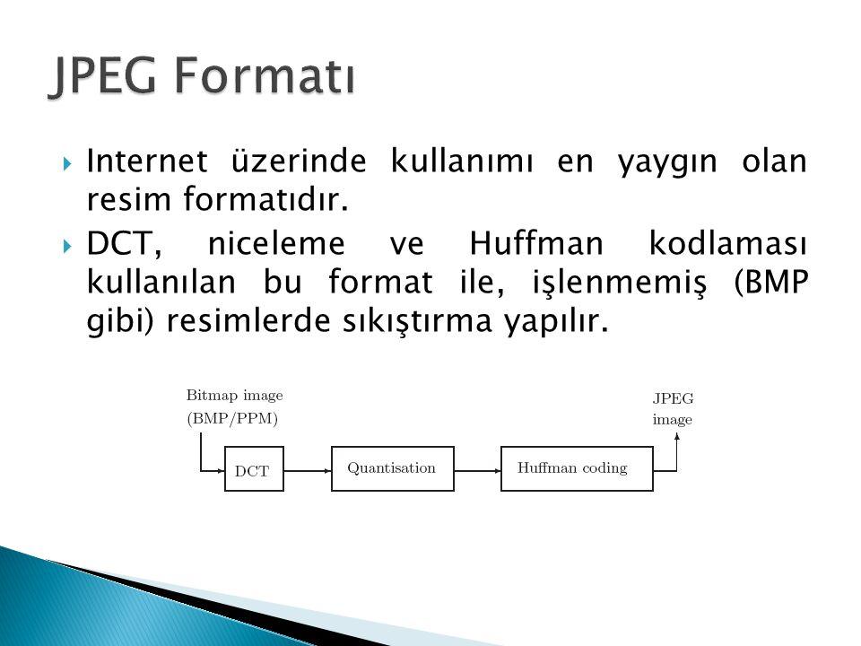  Internet üzerinde kullanımı en yaygın olan resim formatıdır.  DCT, niceleme ve Huffman kodlaması kullanılan bu format ile, işlenmemiş (BMP gibi) re