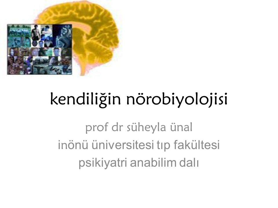 kendiliğin nörobiyolojisi prof dr süheyla ünal i n önü üniversitesi tıp fakültesi psikiyatri anabilim dalı