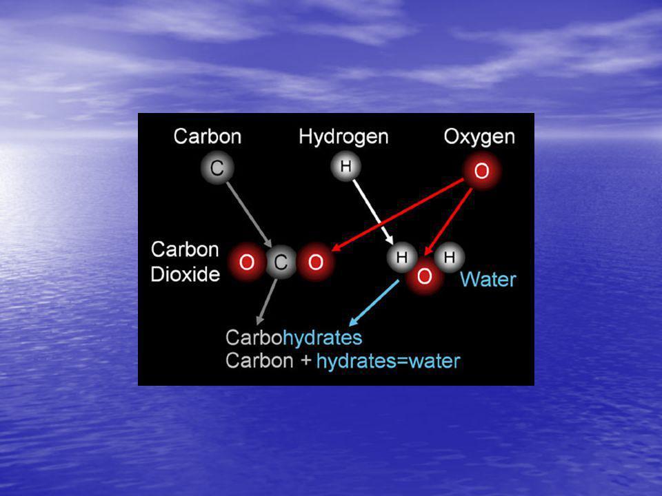 Karbonhidratların Genel Özellikleri Temel enerji kaynağıdır Temel enerji kaynağıdır –Glukoz + Oksijen  Karbon Dioksid + Su + Enerji Membranın esas elemanıdır Membranın esas elemanıdır Metabolik ara üründür Metabolik ara üründür Nükleotidlerin yapı taşıdır Nükleotidlerin yapı taşıdır Hücresel iletişim ve immünitede görevlidir Hücresel iletişim ve immünitede görevlidir