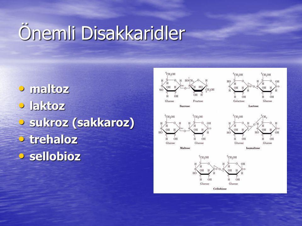 Önemli Disakkaridler maltoz maltoz laktoz laktoz sukroz (sakkaroz) sukroz (sakkaroz) trehaloz trehaloz sellobioz sellobioz