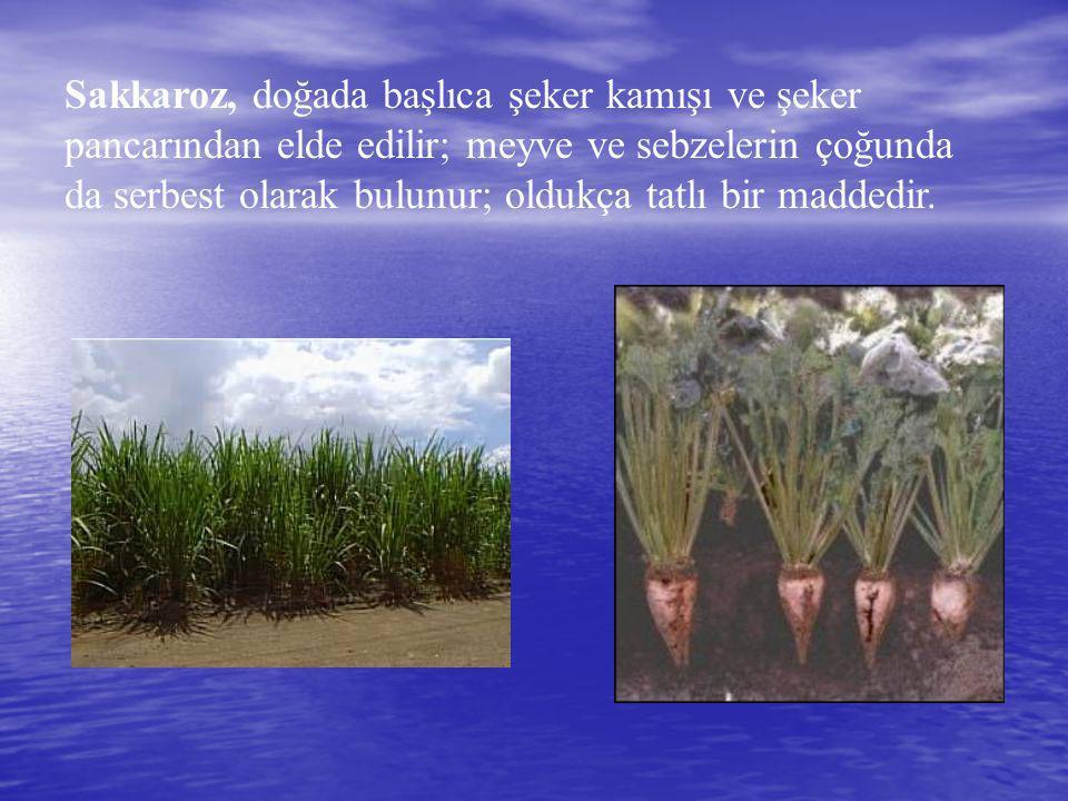 Sakkaroz, doğada başlıca şeker kamışı ve şeker pancarından elde edilir; meyve ve sebzelerin çoğunda da serbest olarak bulunur; oldukça tatlı bir madde