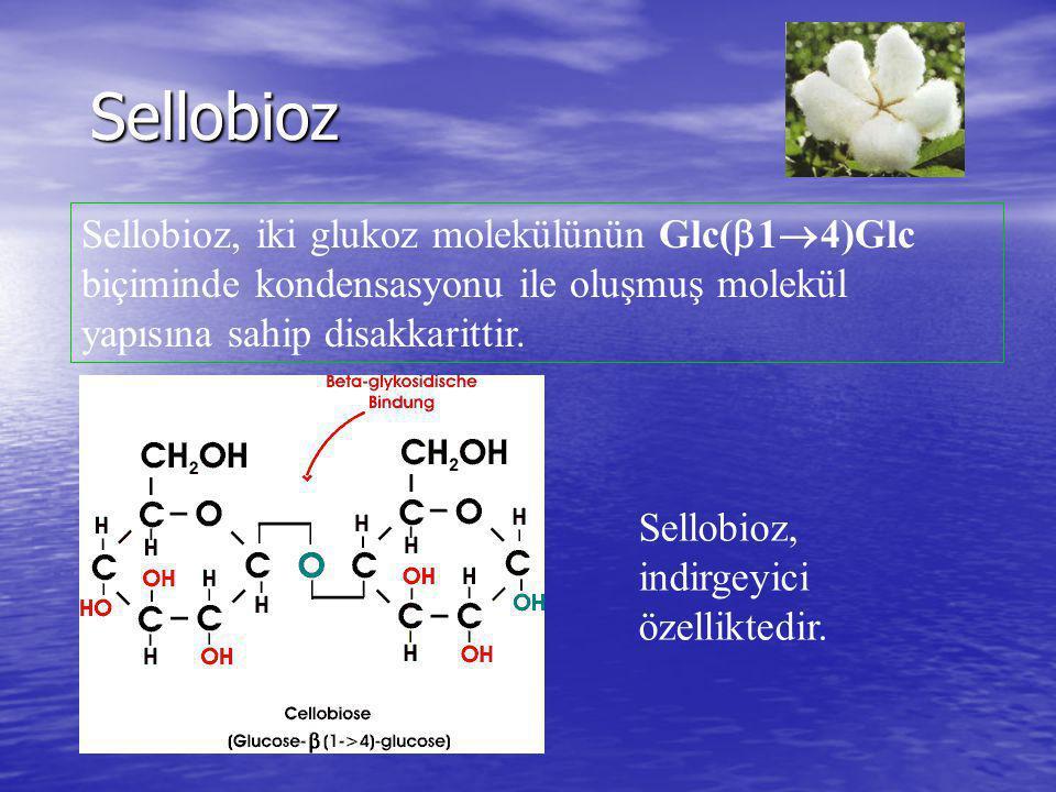 Sellobioz Sellobioz, iki glukoz molekülünün Glc(  1  4)Glc biçiminde kondensasyonu ile oluşmuş molekül yapısına sahip disakkarittir. Sellobioz, indi