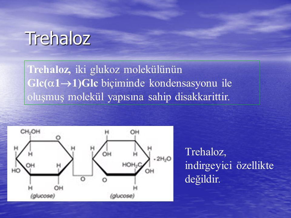 Trehaloz Trehaloz, iki glukoz molekülünün Glc(  1  1)Glc biçiminde kondensasyonu ile oluşmuş molekül yapısına sahip disakkarittir. Trehaloz, indirge
